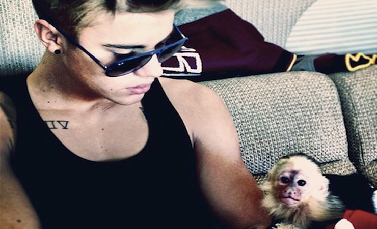 Justin bieber with a monkey on instagram 1364682181