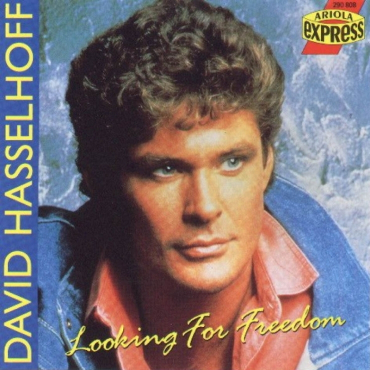 David hasselhoff looking for freedom frontal