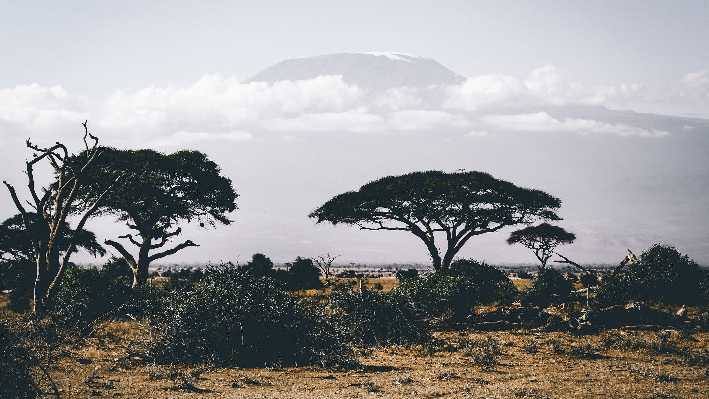 Home zambia