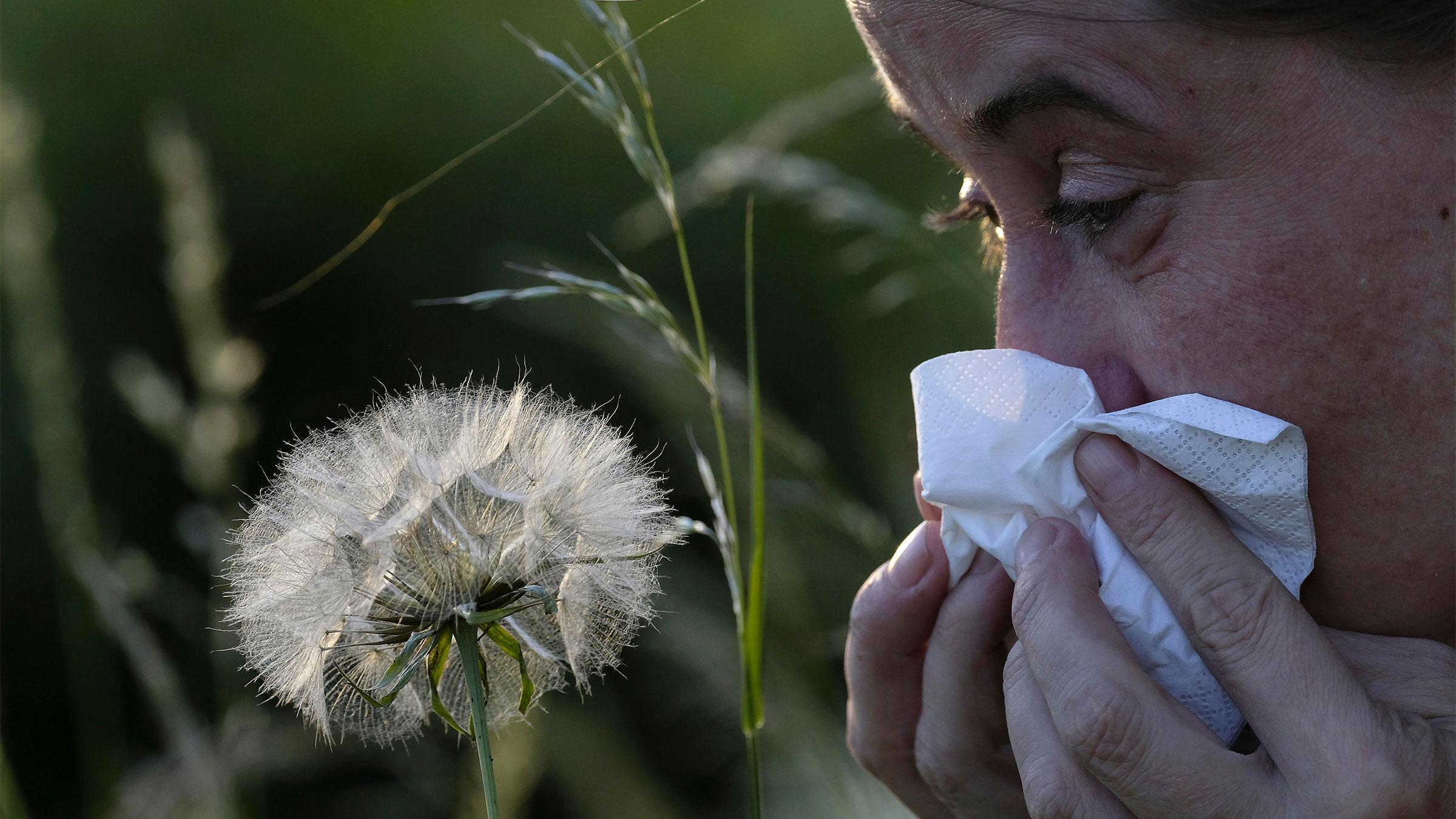 Allergie 1