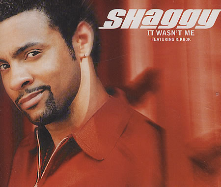 Shaggy it wasnt me 184860