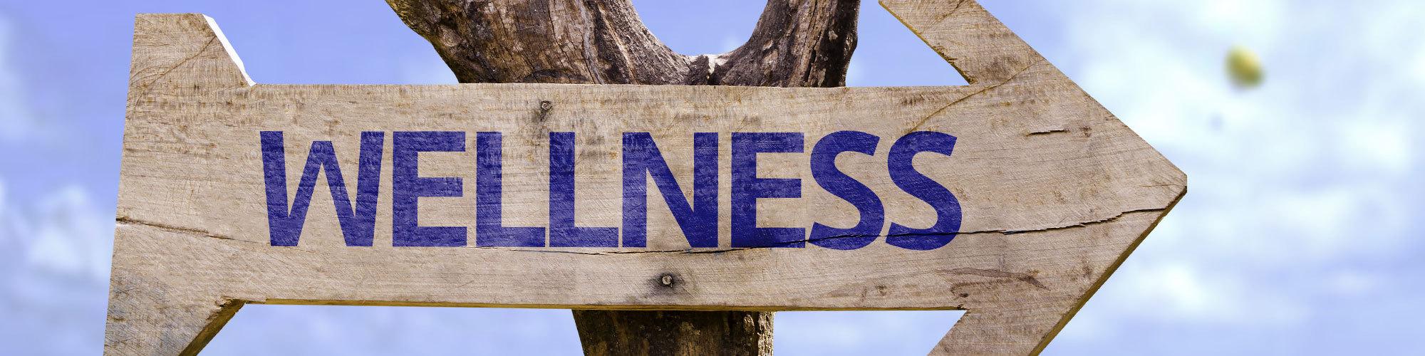 Wellness header 0