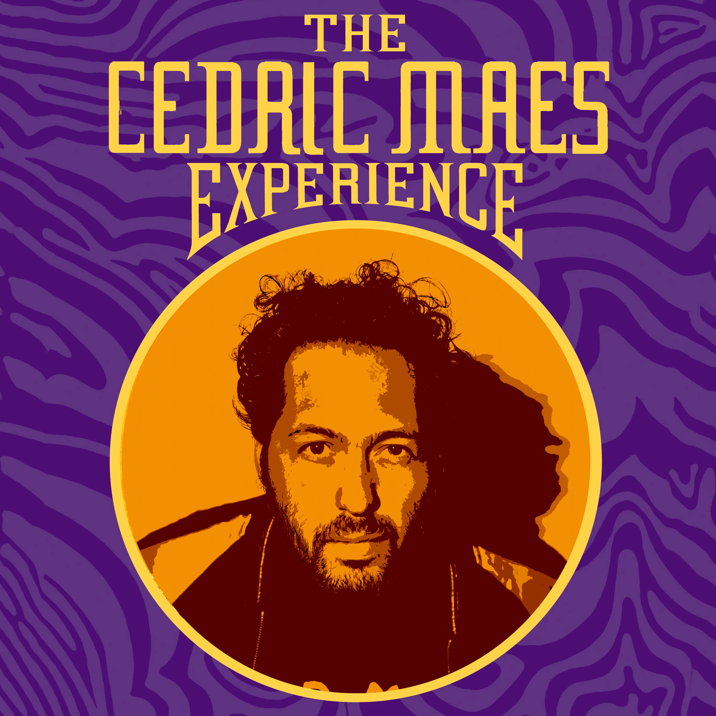 Cedric maes experience