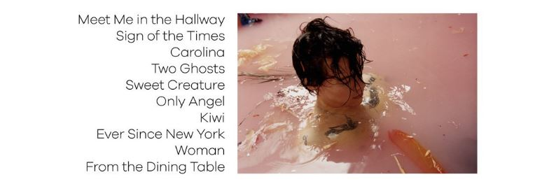 Harry styles albumhoes header