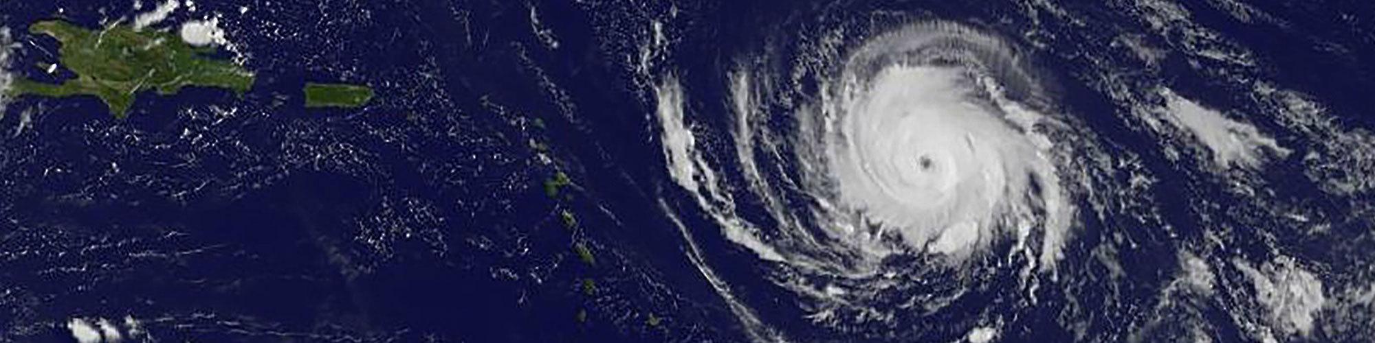 Irma header