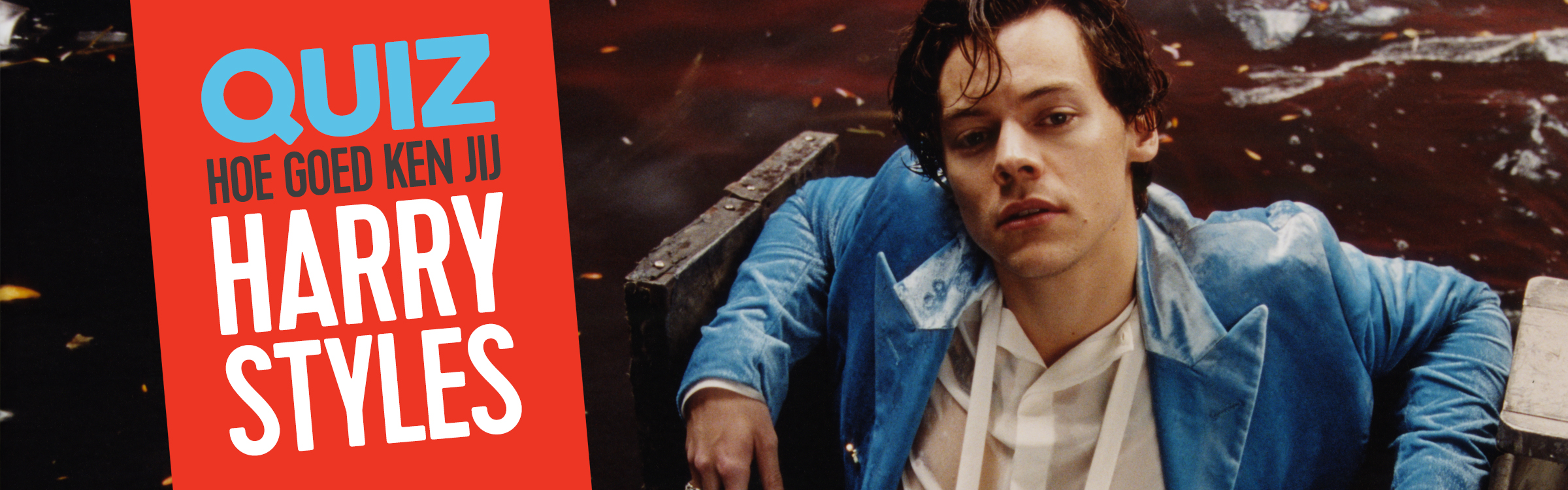 Header.harry.styles