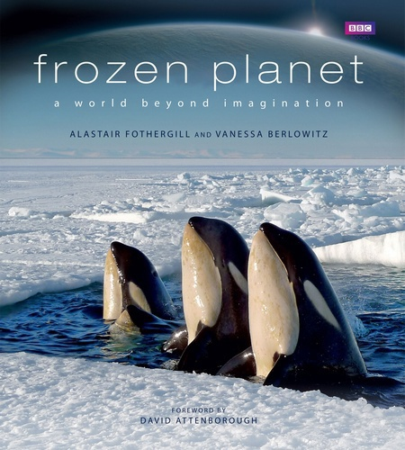Frozen planet book