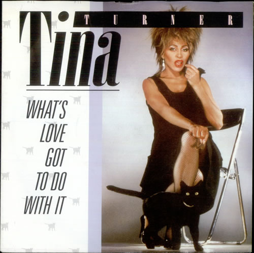 Tina turner whats love got to 521526