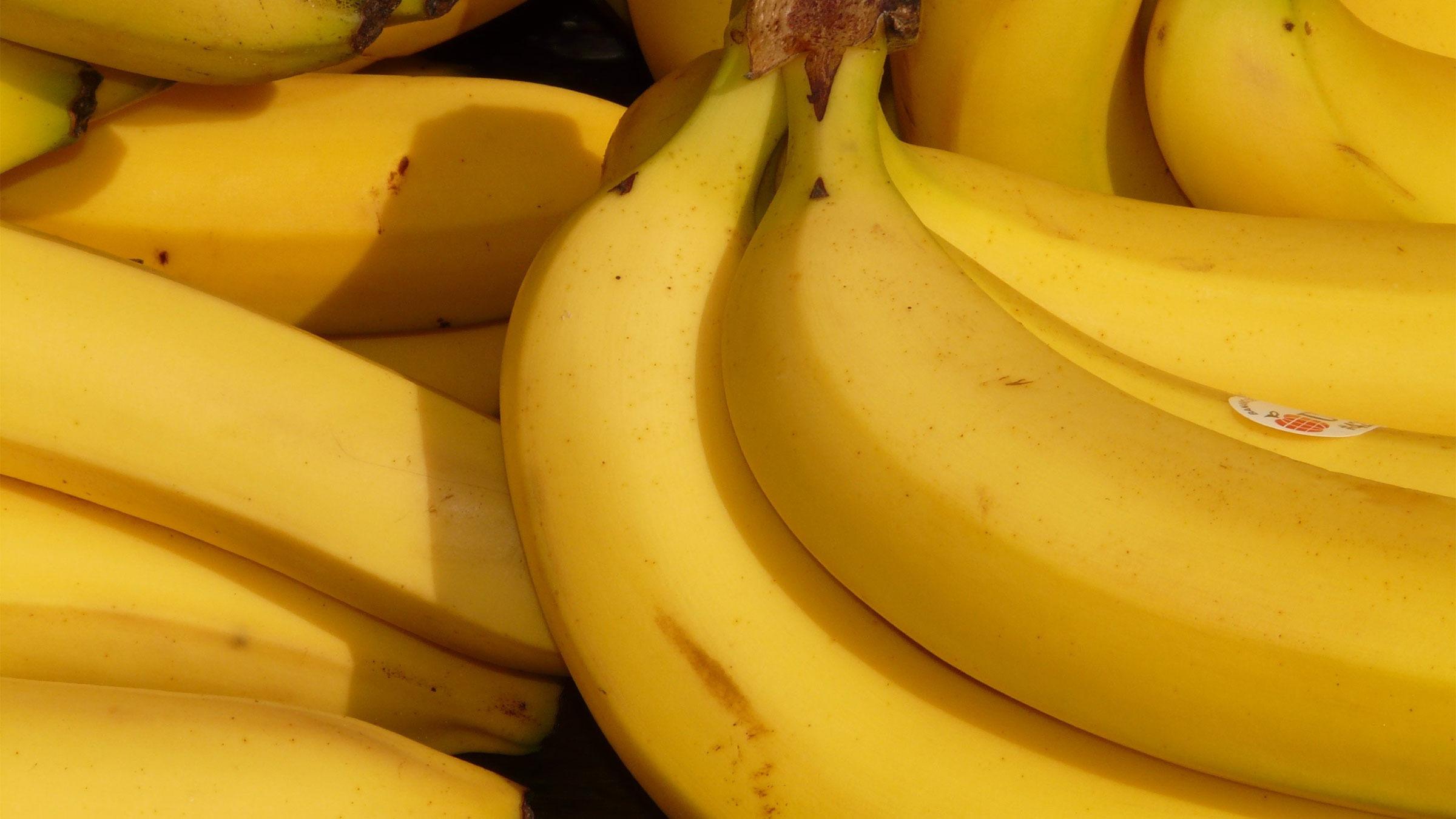 Joe banaan