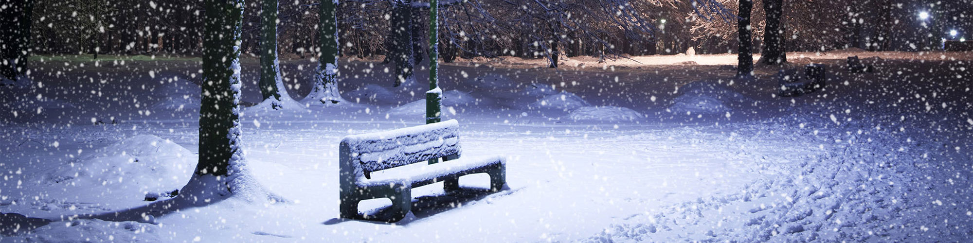 Joe header winter