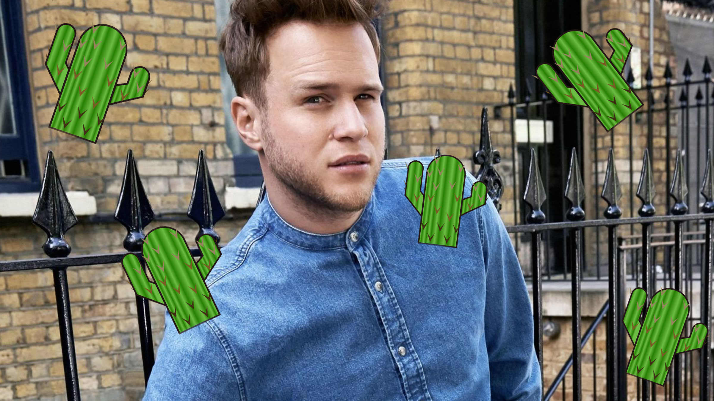 Olly cactus