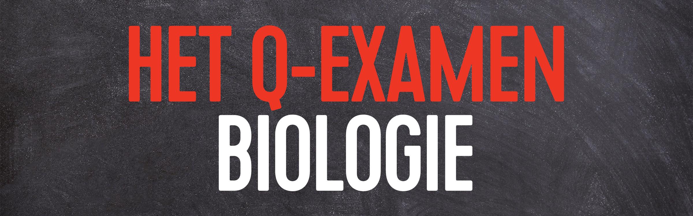 Q examen bio header