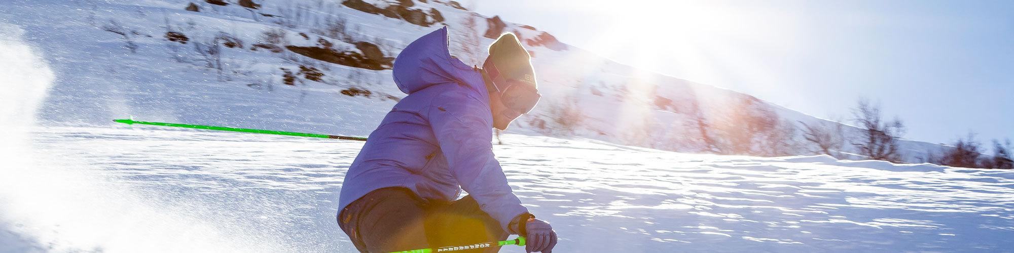 Ski header
