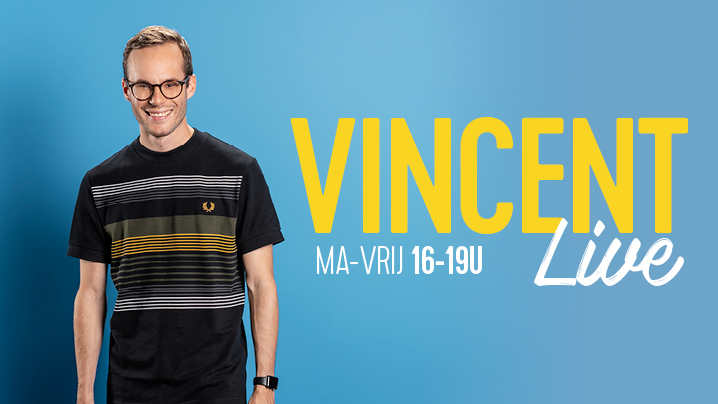Vincent fierens site blokje 1 718x404