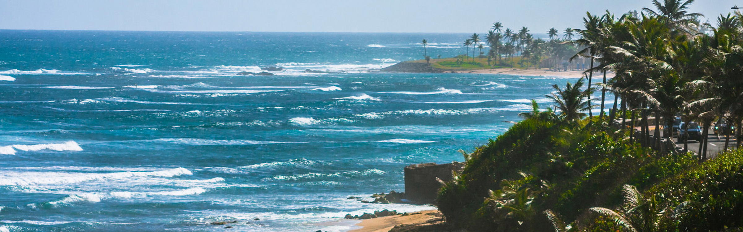 Puertoricoh
